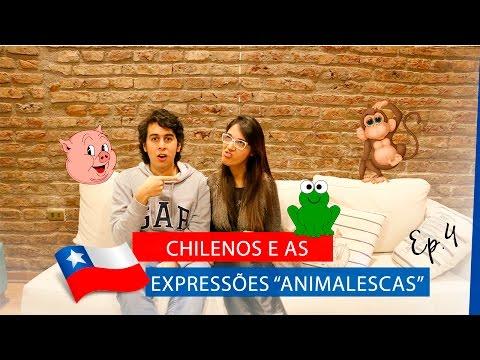 "Chilenos e as Expressões ""Animalescas"" Ep. 4 | La Mirada Chilena"