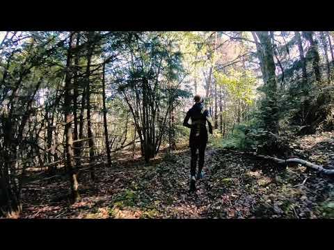 Trailrunning Billingen Skövde - Simsjön