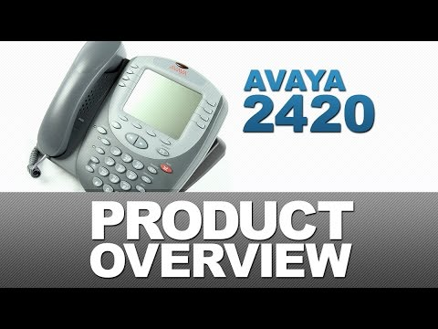 Avaya 2420 Product Overview