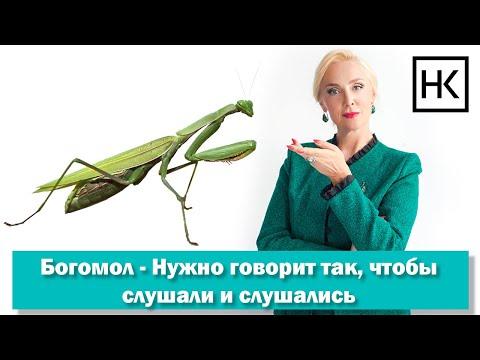 Наталья Козелкова. Как говорить так, чтобы слушали и слушались. Диалоги при животных photo