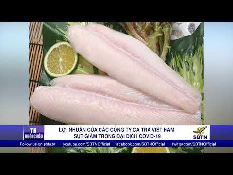 Lợi nhuận của các công ty cá tra Việt Nam sụt giảm trong đại dịch COVID-19