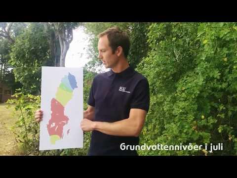 Grundvattennivåer juli - fortsatt allvarligt läge
