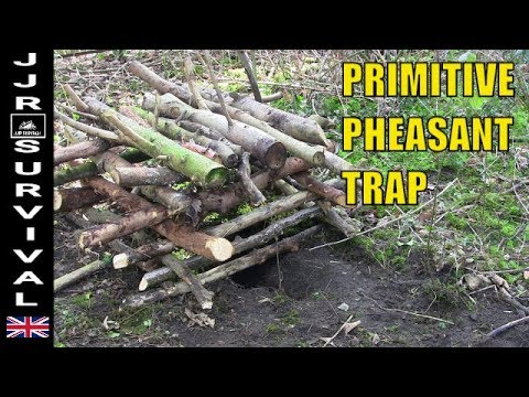 How To Make A Primitive Pheasant Trap