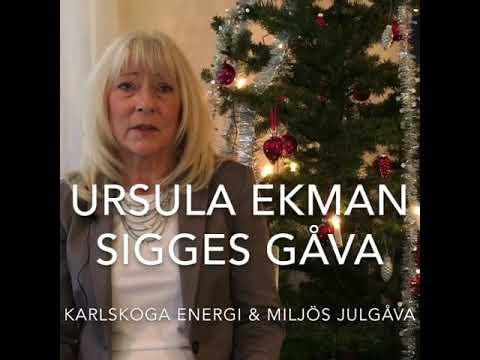 Årets julgåva från oss går till fondens Sigges gåva