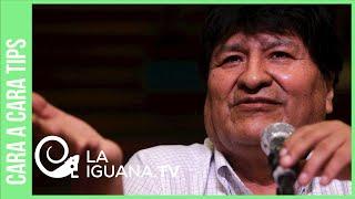 Sepa porque sectores ligados al partido de Evo Morales no lo defendieron tras el golpe de Estado