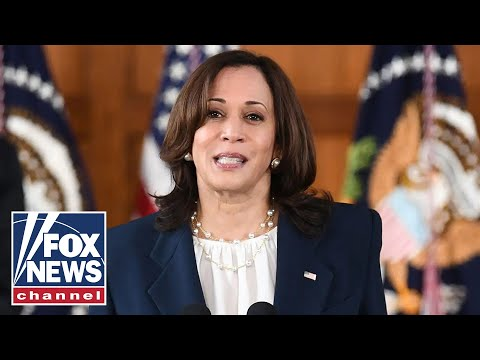 Kamala Harris actively 'avoids' border crisis: Border Patrol Council President