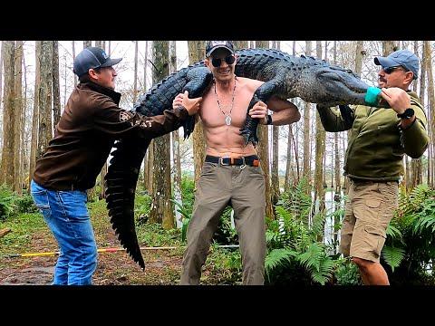 Что Будет Если Поймать Крокодила на Удочку