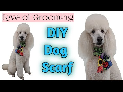 How to make a Dog Scarf | DIY Dog Grooming Accessories | How to make dog scarfs tutorial