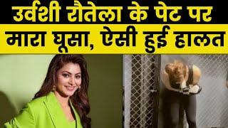 Urvashi Rautela के पेट में घूंसने मारने लगा शख्स, एक्ट्रेस की हो गई ऐसी हालत... देंखें वीडियो - ITVNEWSINDIA