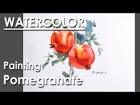 Watercolor Painting : Pomegranate