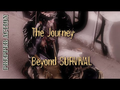 The Journey beyond survival