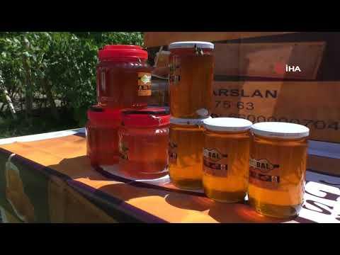 Organik Balın Hanım Ağası Yılda 1,5 Ton Bal Üretiyor