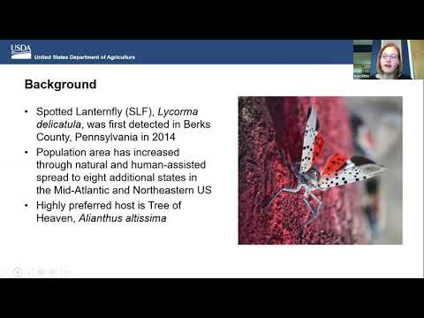 Spotted Lanternfly Summit 2021 - Operations & Stakeholder Input (Day 3)