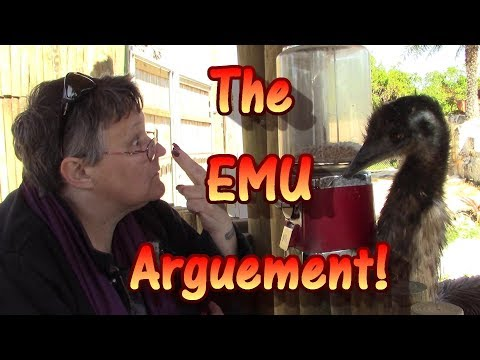 My Argument With An EMU