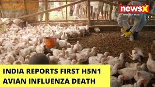 India Reports First H5N1 Avian Influenza Death   11-Year Old Dies At AIIMS Delhi   NewsX - NEWSXLIVE