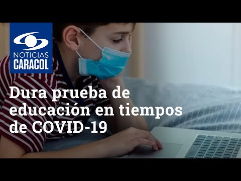 Dura prueba de educación en tiempos de COVID-19: reto de la virtualidad vs. temor a regresar a aulas