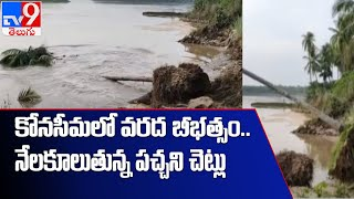 తూర్పుగోదావరి జిల్లాలో వరద  బీభత్సం - TV9 - TV9