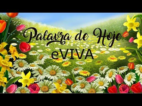 PALAVRA DE HOJE 20 DE JANEIRO eVIVA MENSAGEM MOTIVACIONAL PARA REFLEXÃO DE VIDA - BOM DIA!