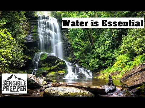 Water is Essential : How to Treat, Filter, Store and Acquire for Survival