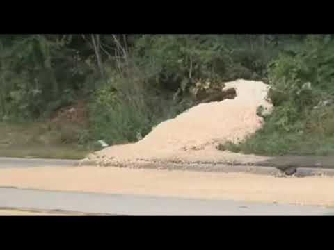 Mysterious Foam Found Bubbling From The Ground In Michigan