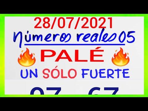 NÚMEROS PARA HOY 28/07/21 DE JULIO PARA TODAS LAS LOTERÍAS....!! Números reales 05 para hoy....!!