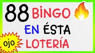 NÚMEROS GANADORES..! (( 88 )) BINGO hoy /loteria NEW YORK/ SORTEOS de las LOTERÍAS/ RESULTADO de HOY
