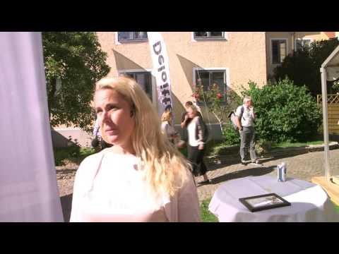 Smarta städer - hot eller möjlighet? Intervju med Ann Hellenius, CIO Stockholms stad