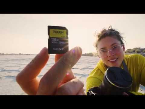 NEW | Sony TOUGH SD Card: Never miss a shot!