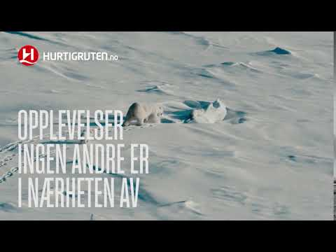 HR 6sek explorer svalbard youtube NO