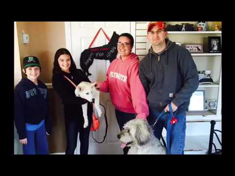 DOG.COM SECRET SANTA! Dog.com gives back to Husky House!