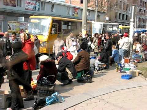 Тернопіль. Продаж тварин на вул. Шептицького