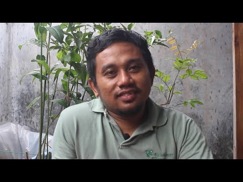Dispatch from Indoneisa with Mariman