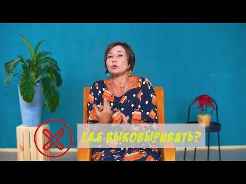 Менструальные чаши photo