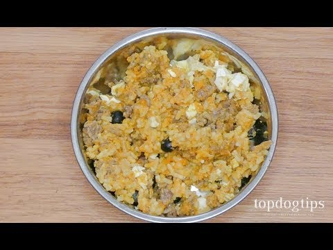 Homemade Senior Dog Food Recipe