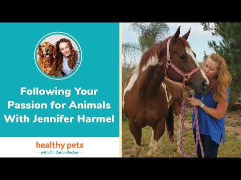 Following Your Passion for Animals With Jennifer Harmel