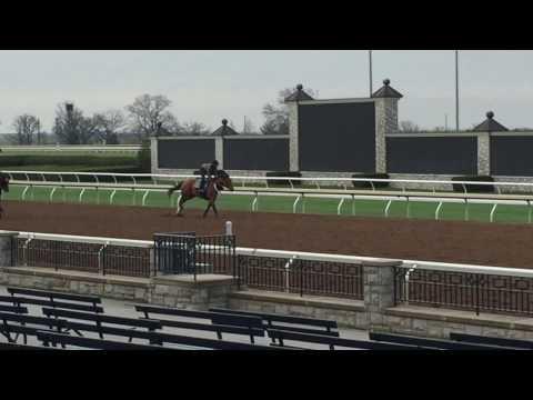 Mo Bourbon galloping at Keeneland 3-29-17.