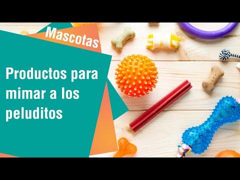 Productos para mimar a los peluditos de la casa | Mascotas