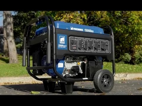 Powerhorse Portable Generator - 13,000 Surge Watts, 10,000 Rated Watts, Electric Start, EPA Complian
