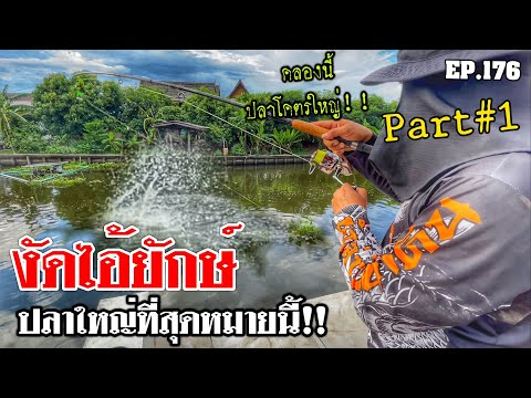 """🎣🐠-We-are-Angler-EP:176-part1"""""""