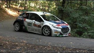 Rally Due valli 2017 – Peugeot 208 T16 e Andreucci- Tappa 1
