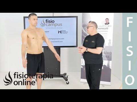 Primer ejercicio ortoestático programa base, etapa 2 y 3. Marcel Caufriez Método hipopresivo