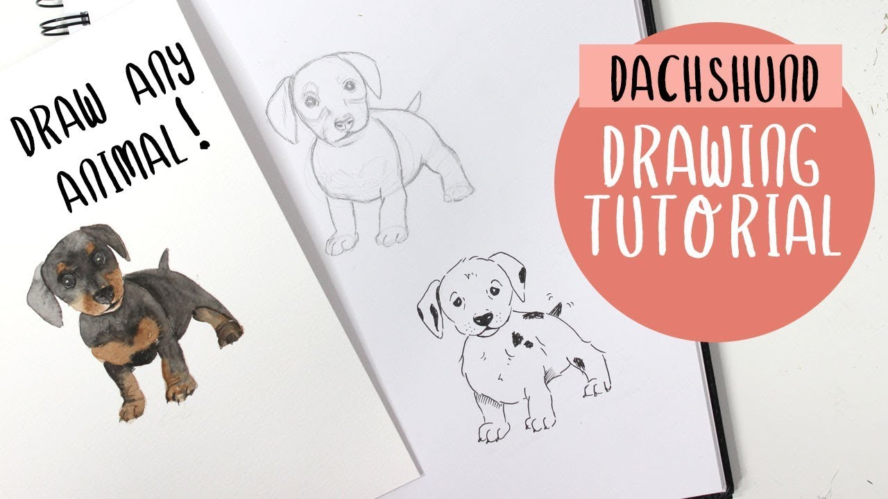How To Draw A Dog (or ANY Animal!) For Beginners - Drawing Tutorial