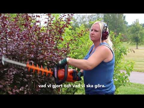 HSB Värmland - Förvaltning