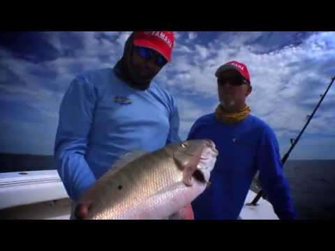 Download youtube to mp3 snapper 2014 chevy florida for Florida insider fishing report
