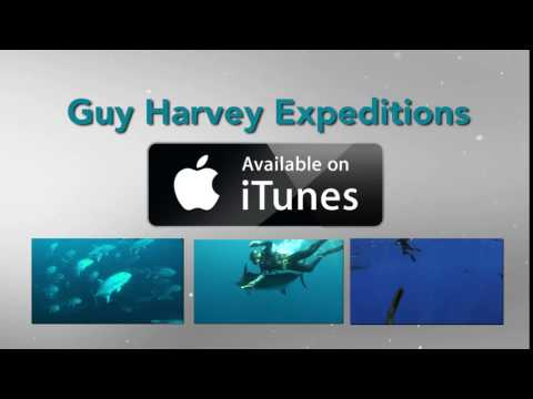 Guy Harvey Expeditions on iTunes
