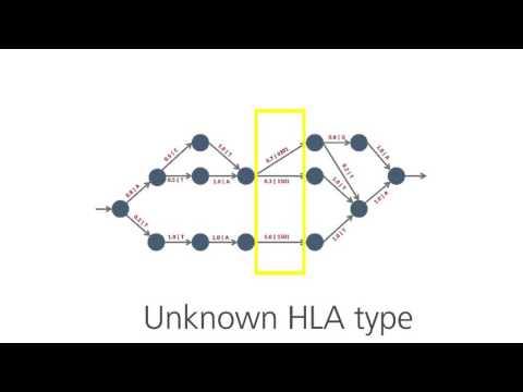4-Digit HLA Typing with Affymetrix' Axiom HLA Analysis