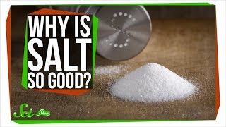 Why Does Salt Make Food Taste Better?