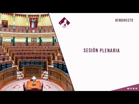 Sesión Plenaria (25/02/2021)
