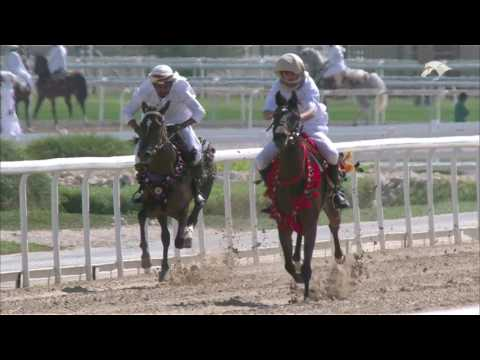 QREC - Racing &  Equestrian Club | QCPTV.com