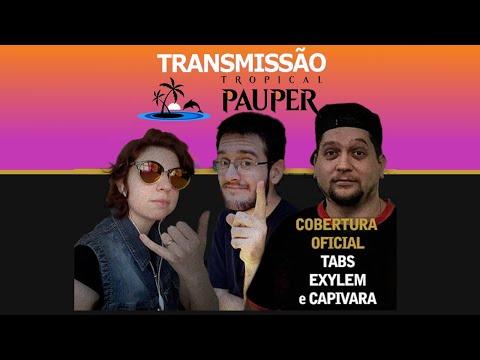 Tropical Pauper - Narração ao vivo - 08/08/2020